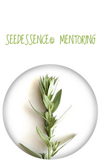 Seedessence© Mentoring