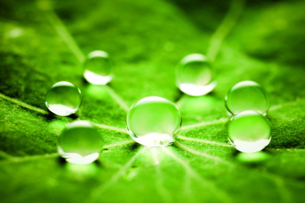 bulles eau équilibre nature